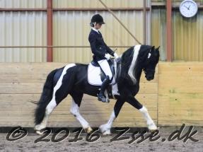 lancelot-rideproeve-019